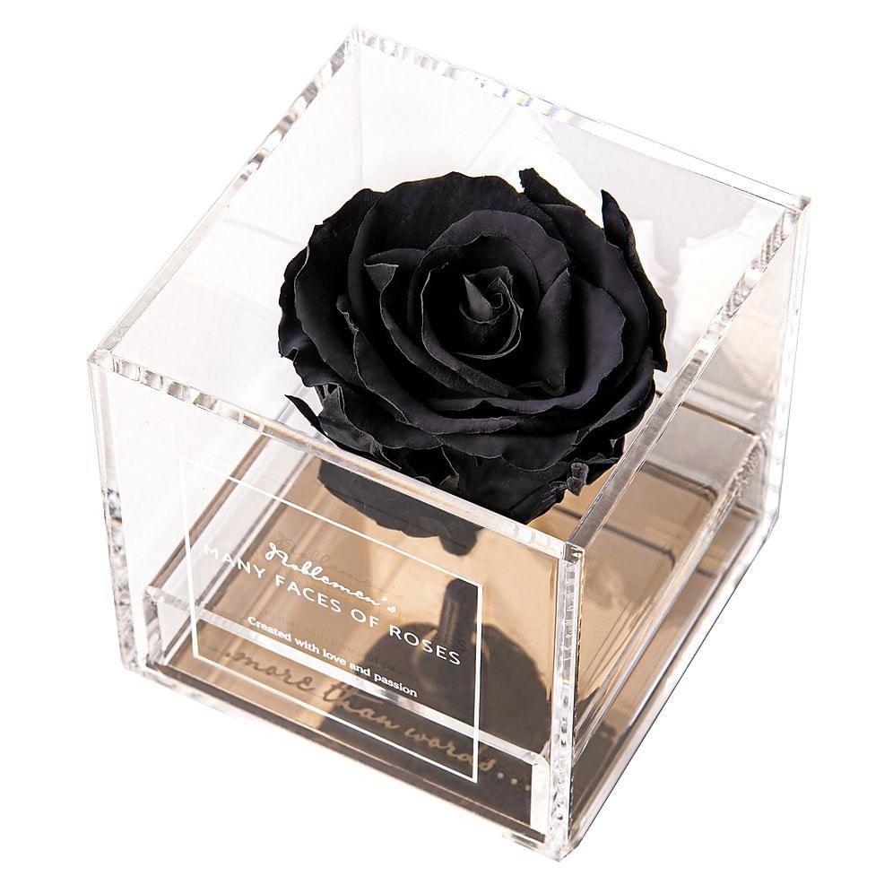 roza-black